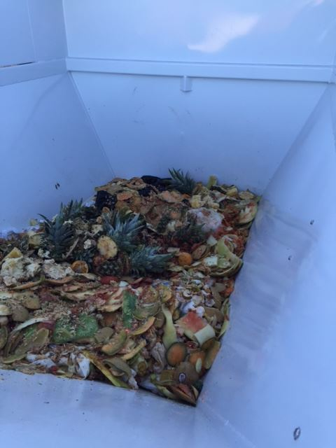 Food Waste ready to dump!